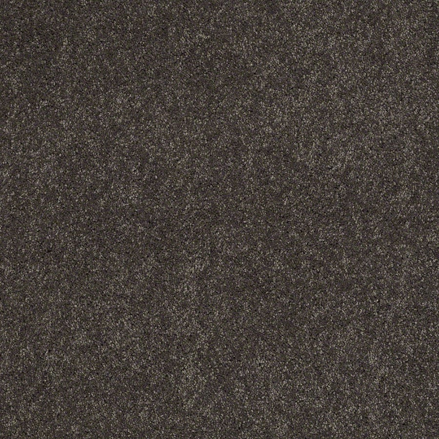 STAINMASTER Active Family Supreme Delight Nightfall Plush Carpet Sample
