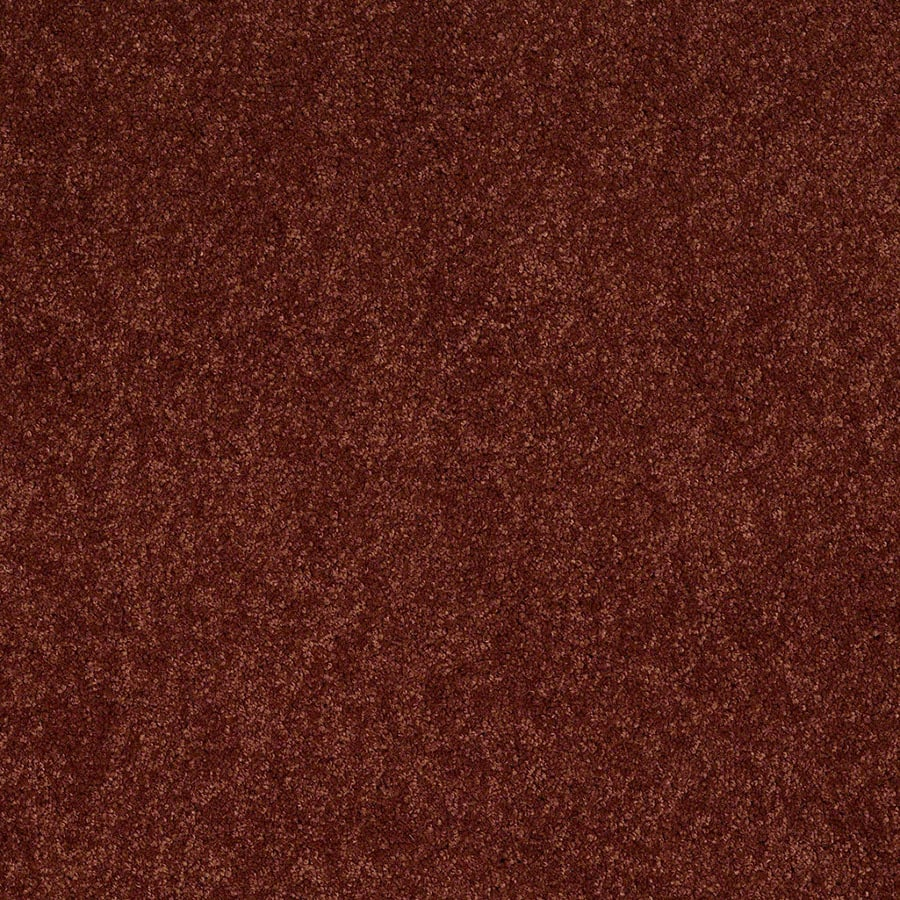 STAINMASTER Active Family Supreme Delight Chili Plush Carpet Sample