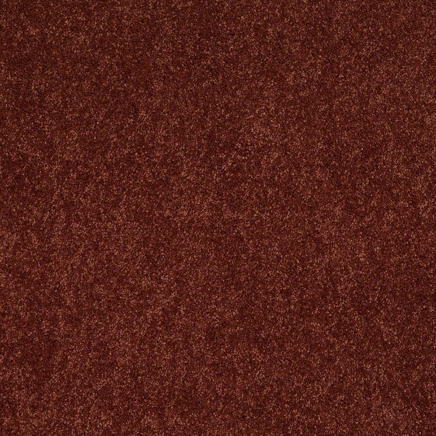STAINMASTER Active Family Supreme Delight Chili Carpet Sample