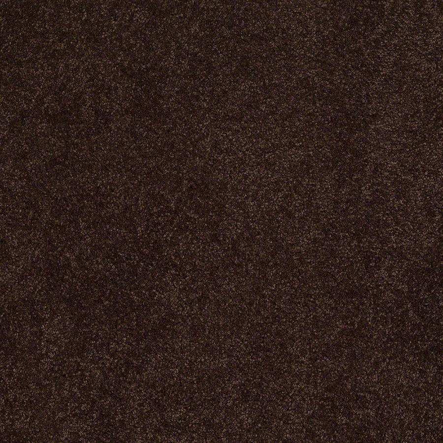 STAINMASTER Active Family Supreme Delight Chestnut Carpet Sample