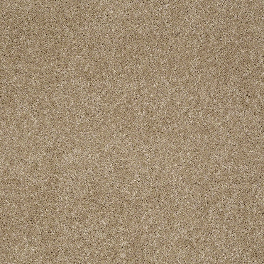 STAINMASTER Supreme Delight Active Family Trail Plush Carpet Sample