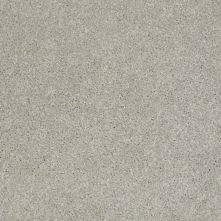 STAINMASTER Supreme Delight Active Family March Winds Plush Carpet Sample