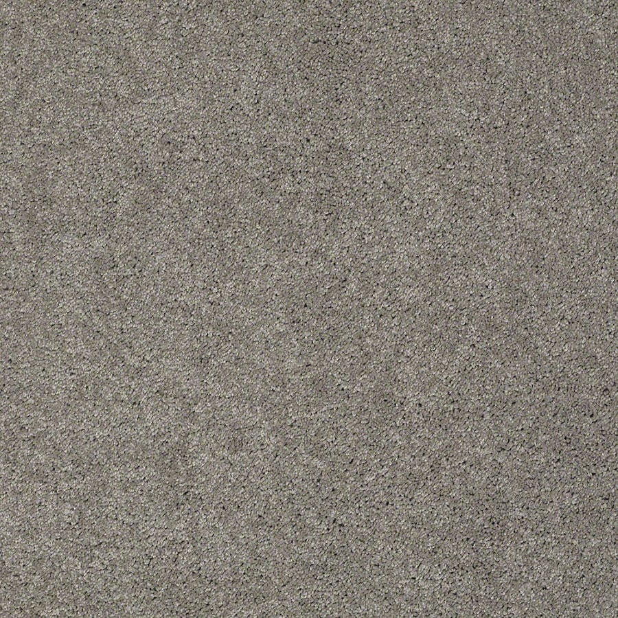 STAINMASTER Active Family Supreme Delight Heavy Metal Carpet Sample