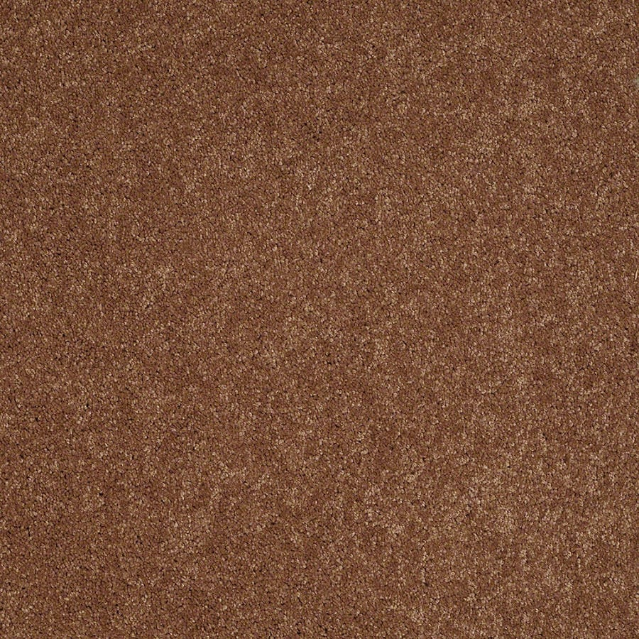 STAINMASTER Active Family Supreme Delight Mesa Sunset Plush Carpet Sample