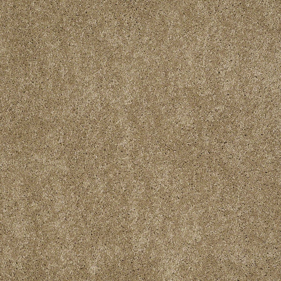 STAINMASTER Active Family Supreme Delight Peanut Butter Plush Carpet Sample