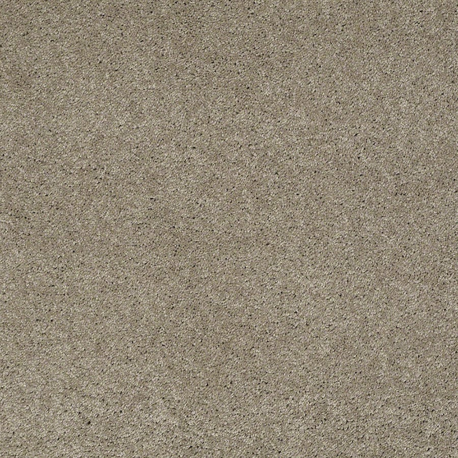 STAINMASTER Active Family Supreme Delight Driftwood Carpet Sample