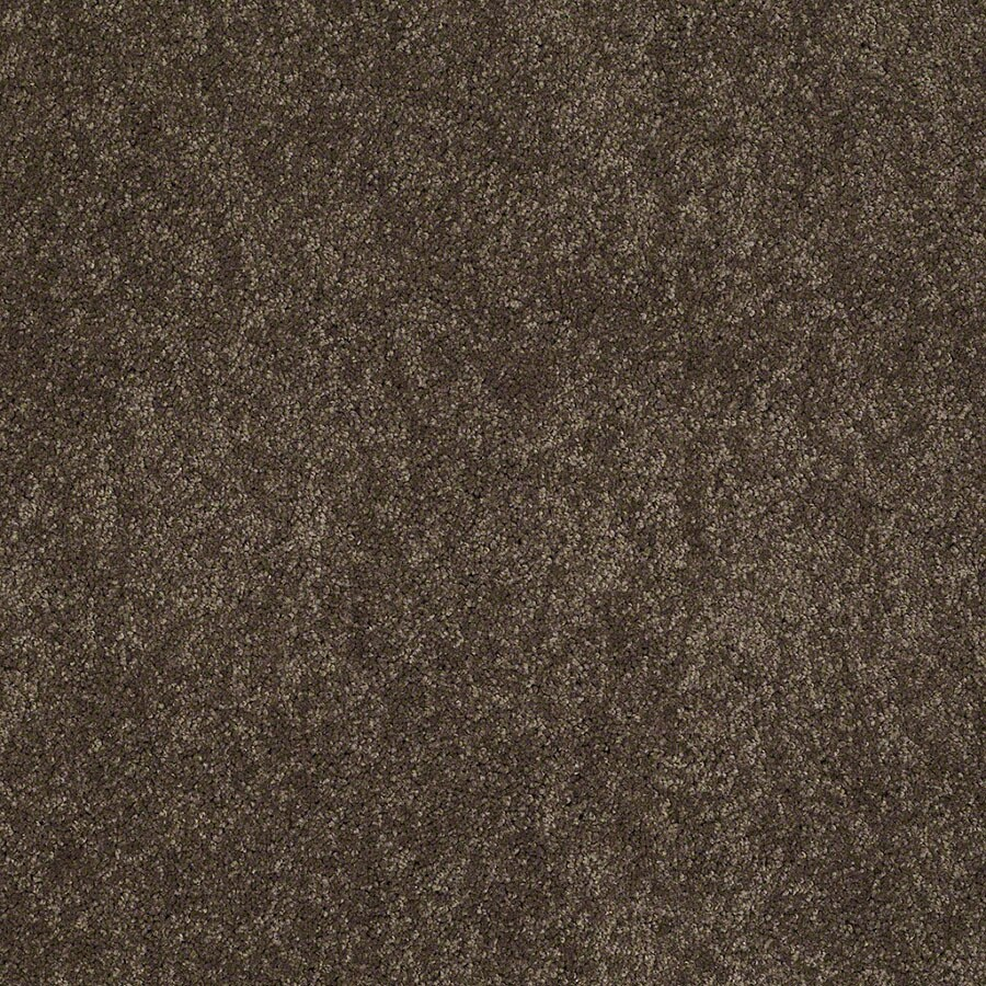 STAINMASTER Active Family Supreme Delight River Rock Carpet Sample