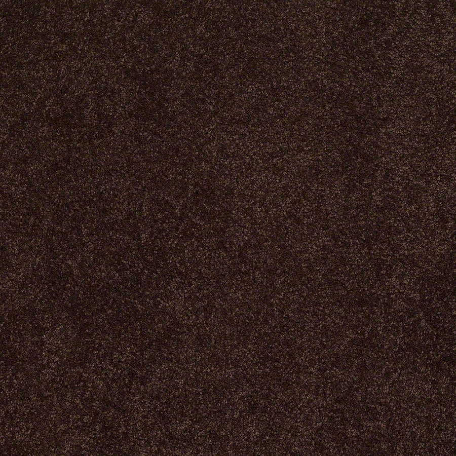 STAINMASTER Active Family Supreme Delight Chestnut Carpet Sample
