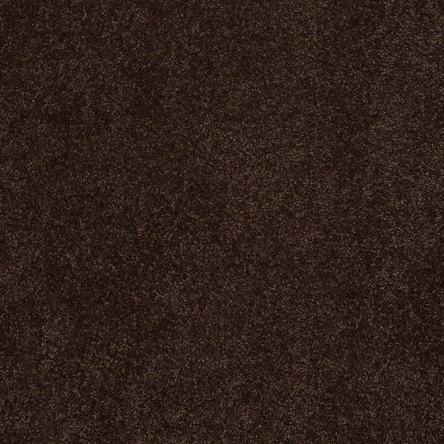 STAINMASTER Supreme Delight Active Family Chestnut Plush Carpet Sample