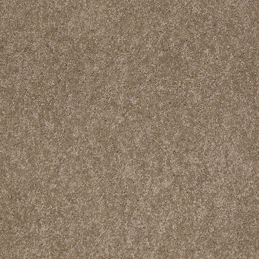 STAINMASTER Active Family Supreme Delight Hazelnut Carpet Sample