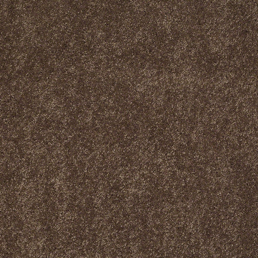 STAINMASTER Supreme Delight Active Family Hot Cocoa Plus Carpet Sample