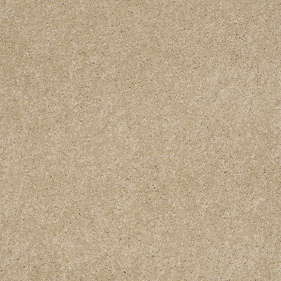 STAINMASTER Supreme Delight Active Family Nevada Sand Plush Carpet Sample