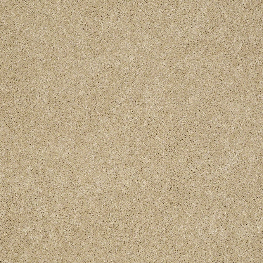 STAINMASTER Active Family Supreme Delight Twinkle Plush Carpet Sample