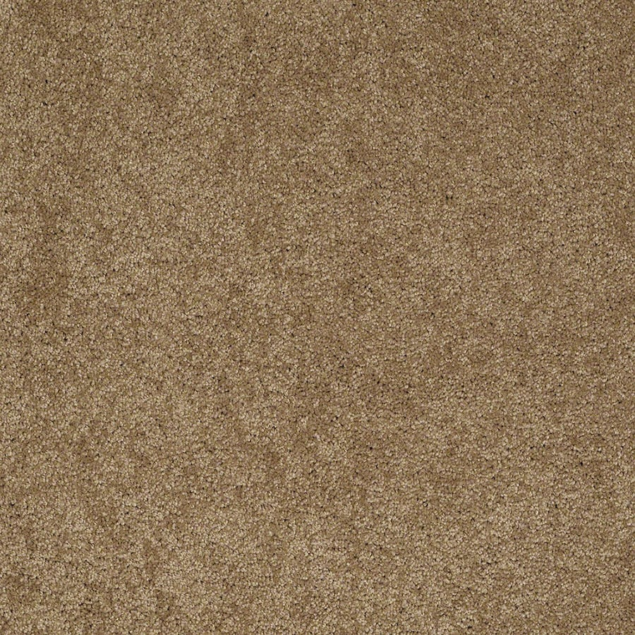 STAINMASTER Active Family Supreme Delight Cedar Chest Plush Carpet Sample