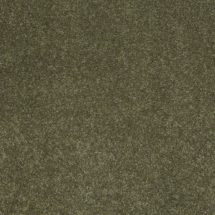 STAINMASTER Active Family Supreme Delight New Willow Plush Carpet Sample