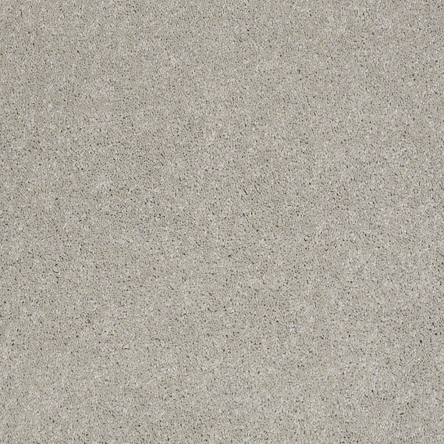 STAINMASTER Active Family Supreme Delight March Winds Carpet Sample