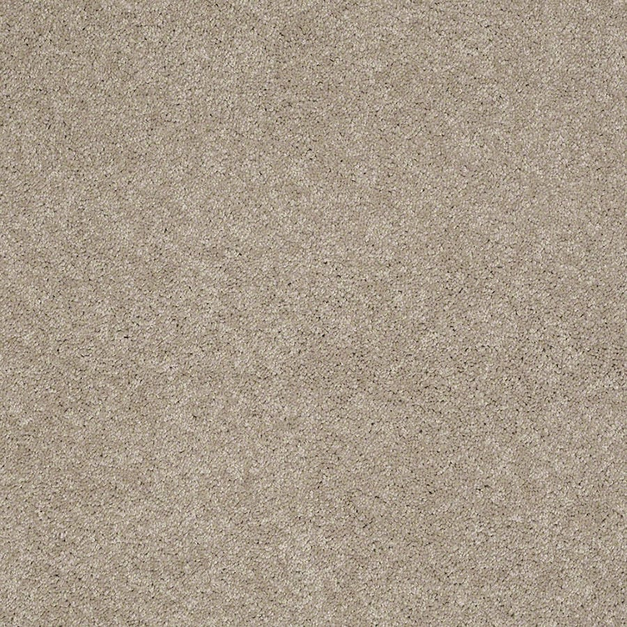 STAINMASTER Supreme Delight Active Family Park Avenue Plush Carpet Sample
