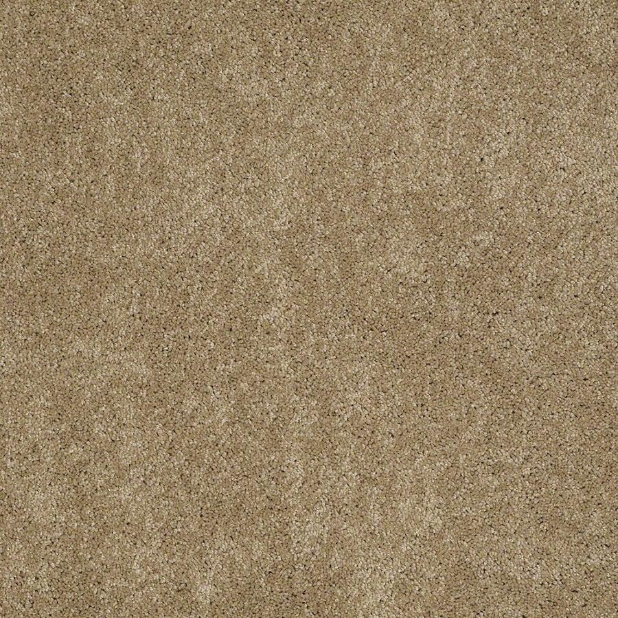 STAINMASTER Supreme Delight Active Family Peanut Butter Plush Carpet Sample