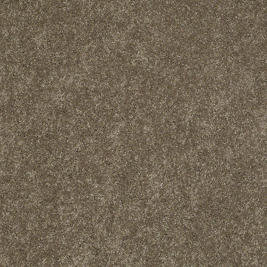 STAINMASTER Active Family Supreme Delight Boardwalk Carpet Sample