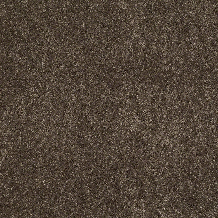 STAINMASTER Supreme Delight Active Family River Rock Plus Carpet Sample