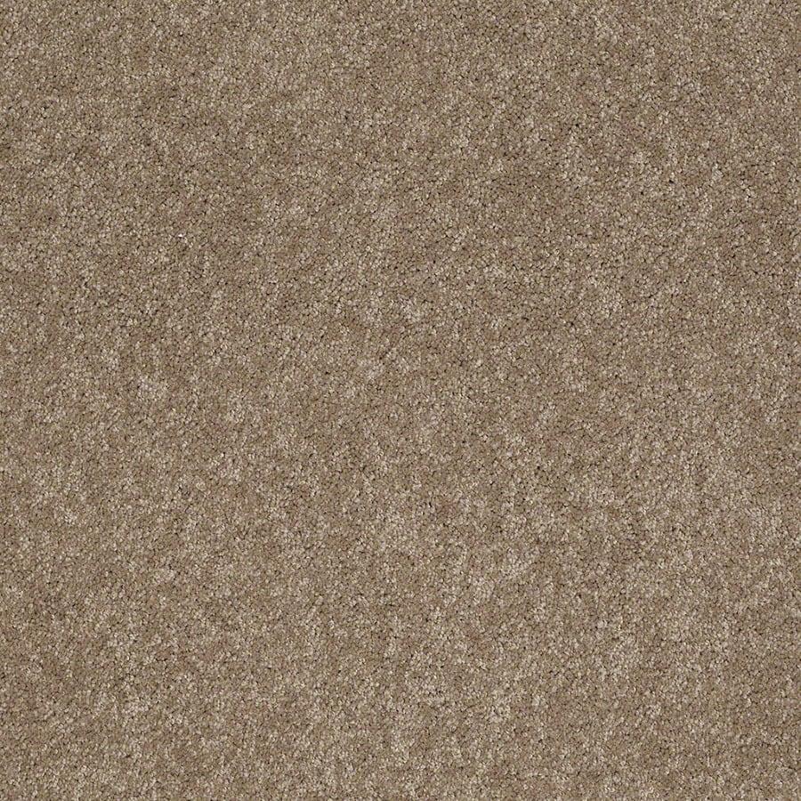 STAINMASTER Supreme Delight Active Family Hazelnut Plush Carpet Sample
