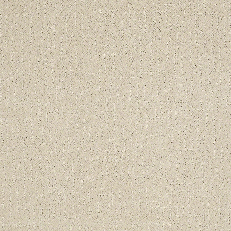 STAINMASTER Active Family Undeniable Macadamia Carpet Sample
