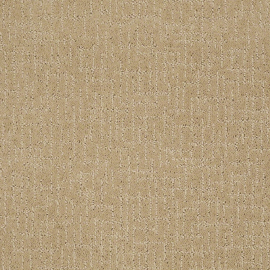 STAINMASTER Undeniable Active Family Golden Fleece Cut and Loop Carpet Sample