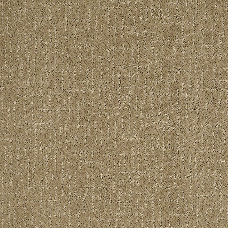 STAINMASTER Undeniable Active Family Sahara Sun Cut and Loop Carpet Sample