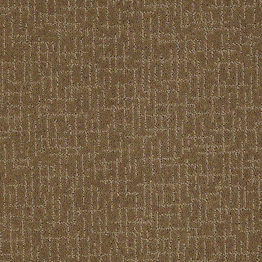 STAINMASTER Undeniable Active Family Medal Bronze Cut and Loop Carpet Sample