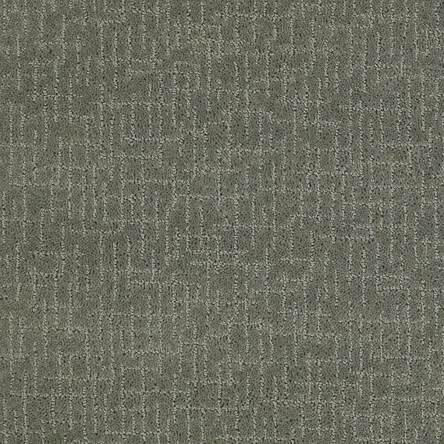 STAINMASTER Active Family Undeniable Agave Green Carpet Sample