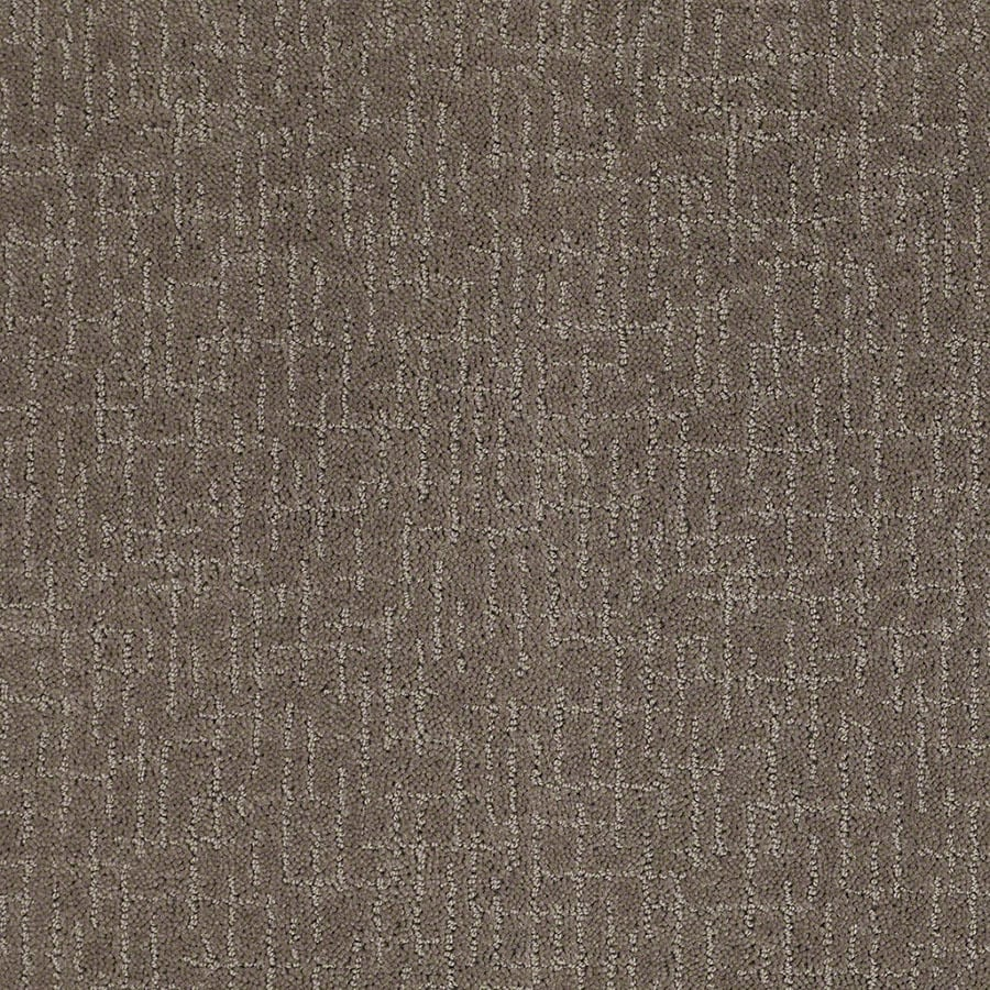 STAINMASTER Active Family Undeniable Glacial Rock Carpet Sample