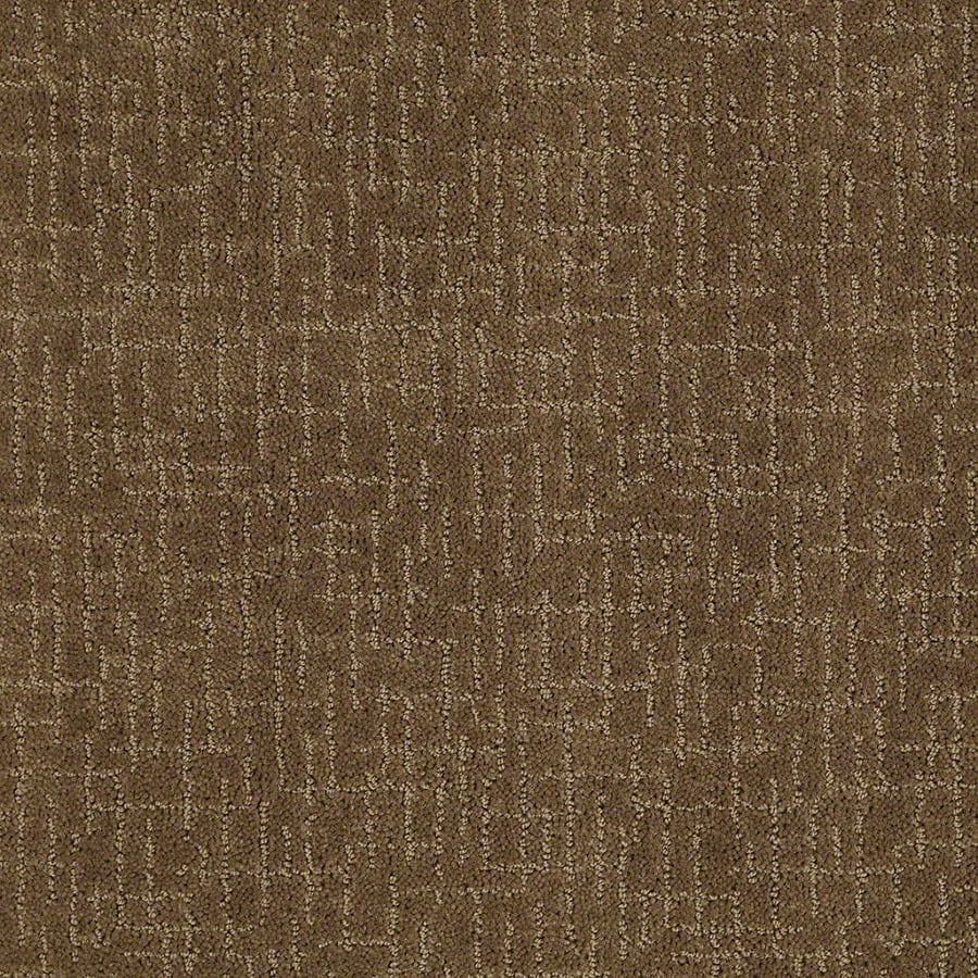STAINMASTER Active Family Undeniable Toasted Coconut Berber/Loop Carpet Sample