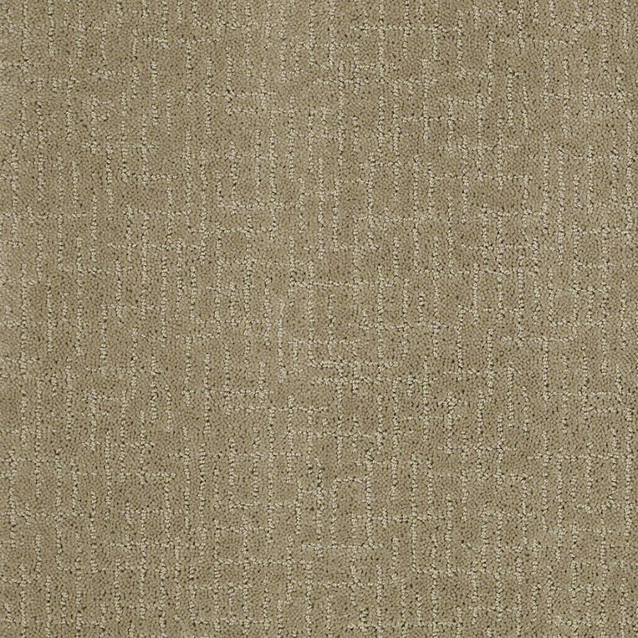 STAINMASTER Active Family Undeniable Fennel Carpet Sample