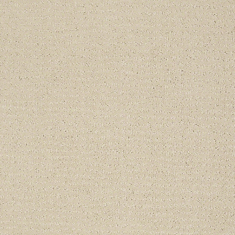 STAINMASTER Active Family Undisputed Macadamia Carpet Sample