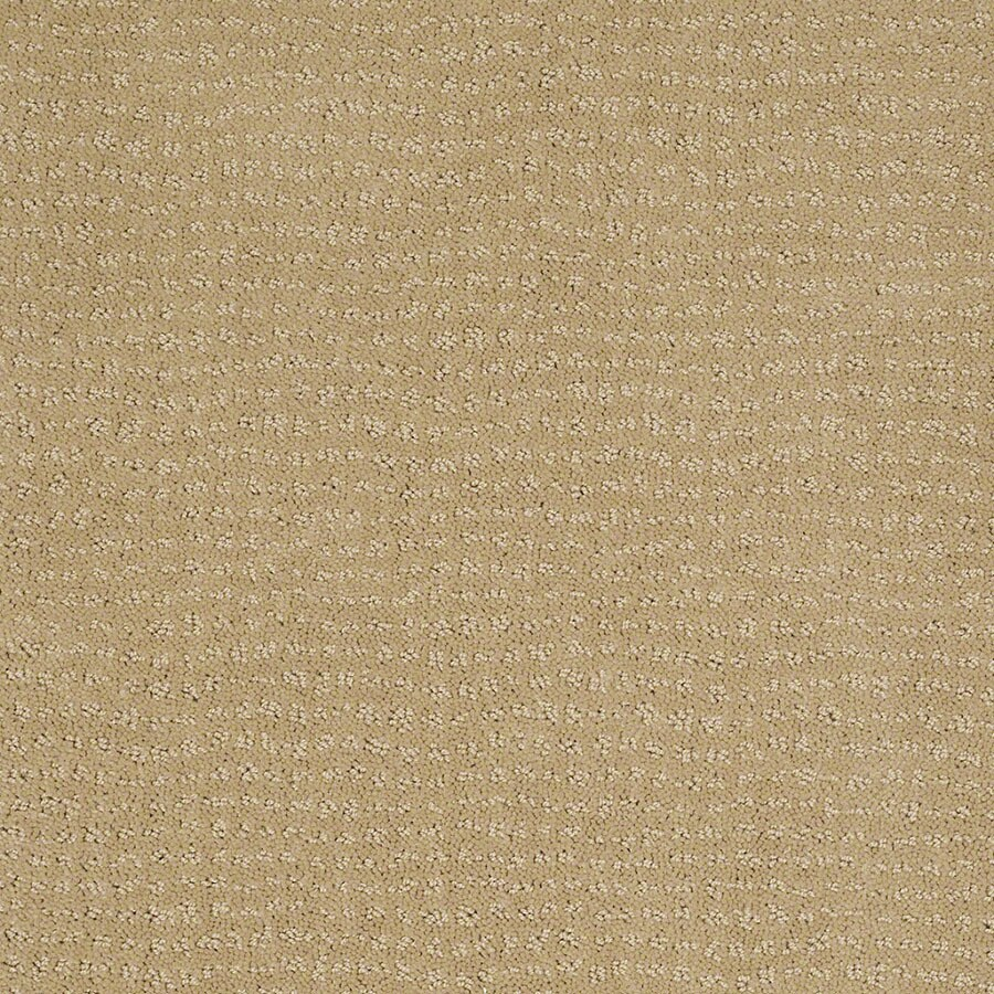 STAINMASTER Active Family Undisputed Golden Fleece Carpet Sample