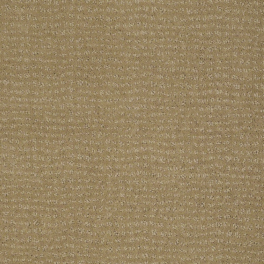 STAINMASTER Undisputed Active Family Sahara Sun Cut and Loop Carpet Sample