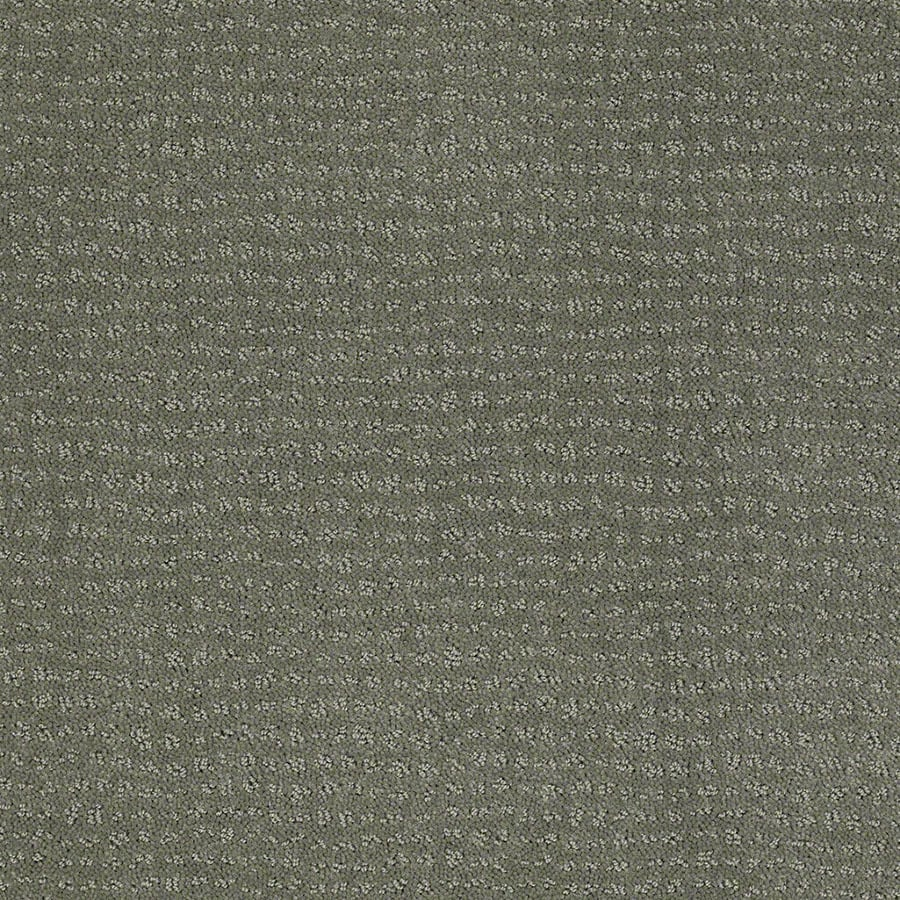 STAINMASTER Active Family Undisputed Agave Green Berber/Loop Carpet Sample
