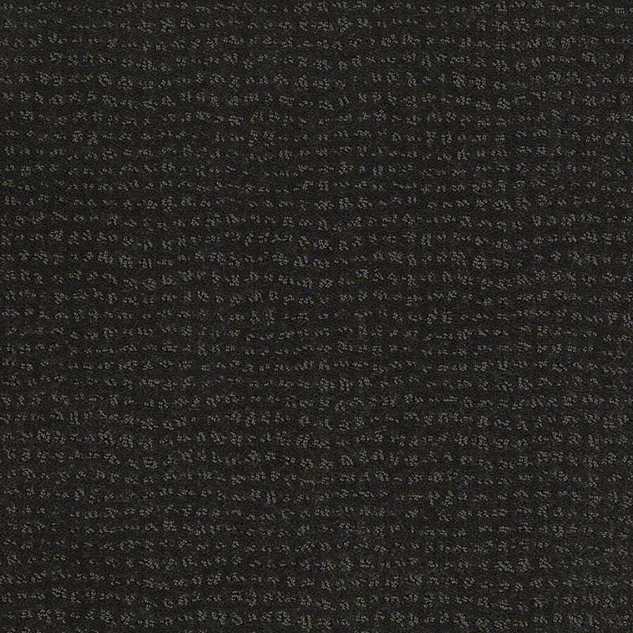 STAINMASTER Active Family Undisputed Cilantro Berber/Loop Carpet Sample