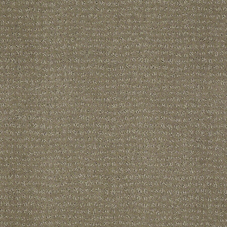 STAINMASTER Active Family Undisputed Greige Carpet Sample