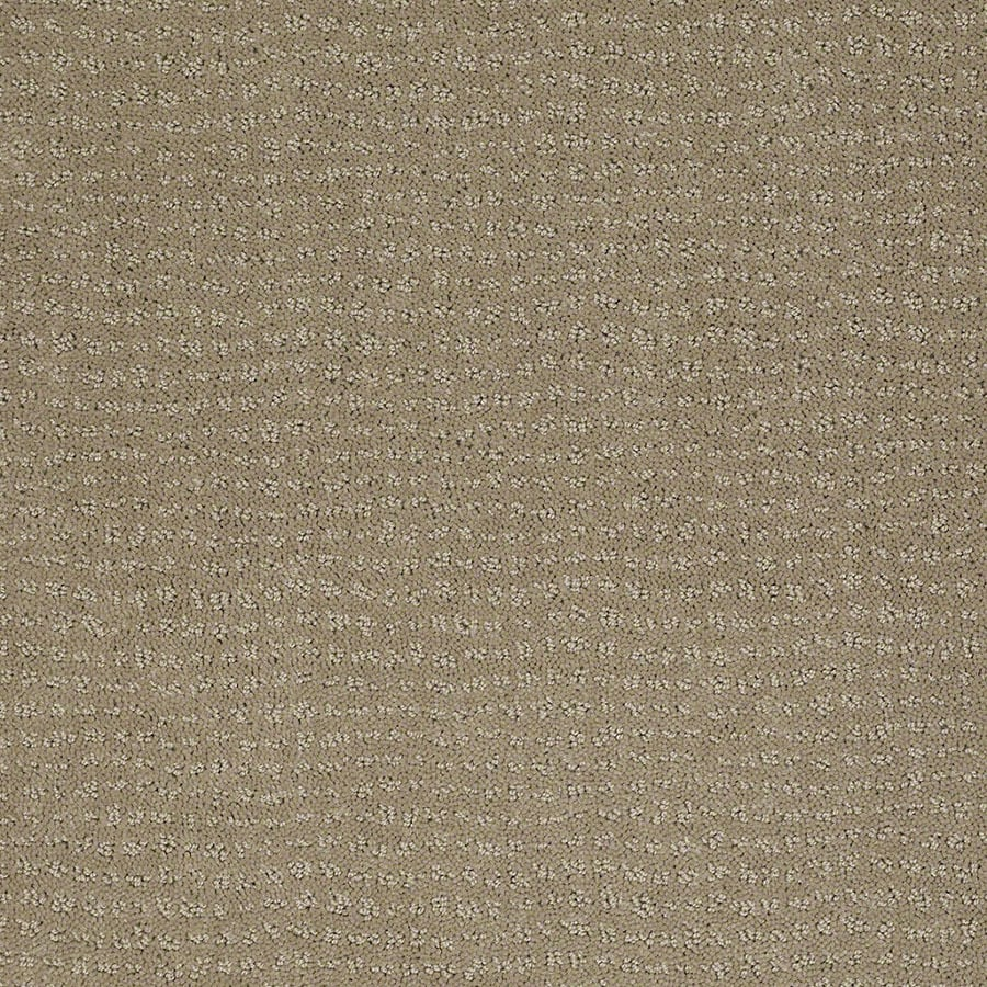 STAINMASTER Active Family Undisputed Hazy Carpet Sample