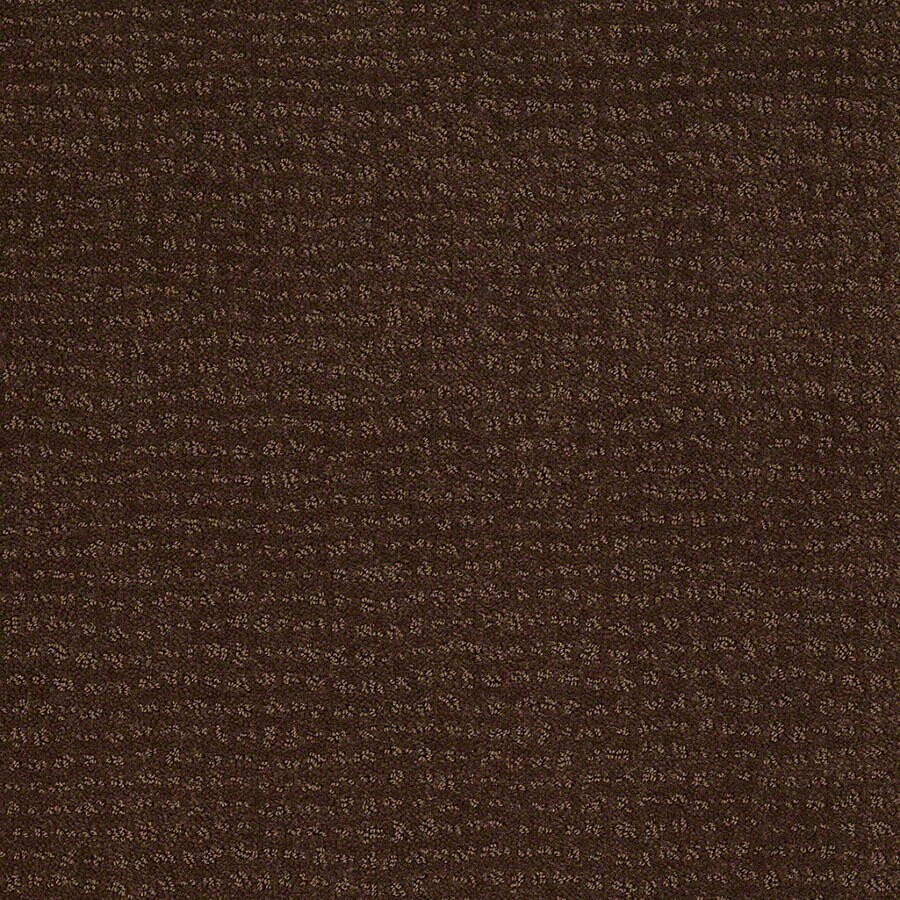 STAINMASTER Undisputed Active Family Nutmeg Cut and Loop Carpet Sample