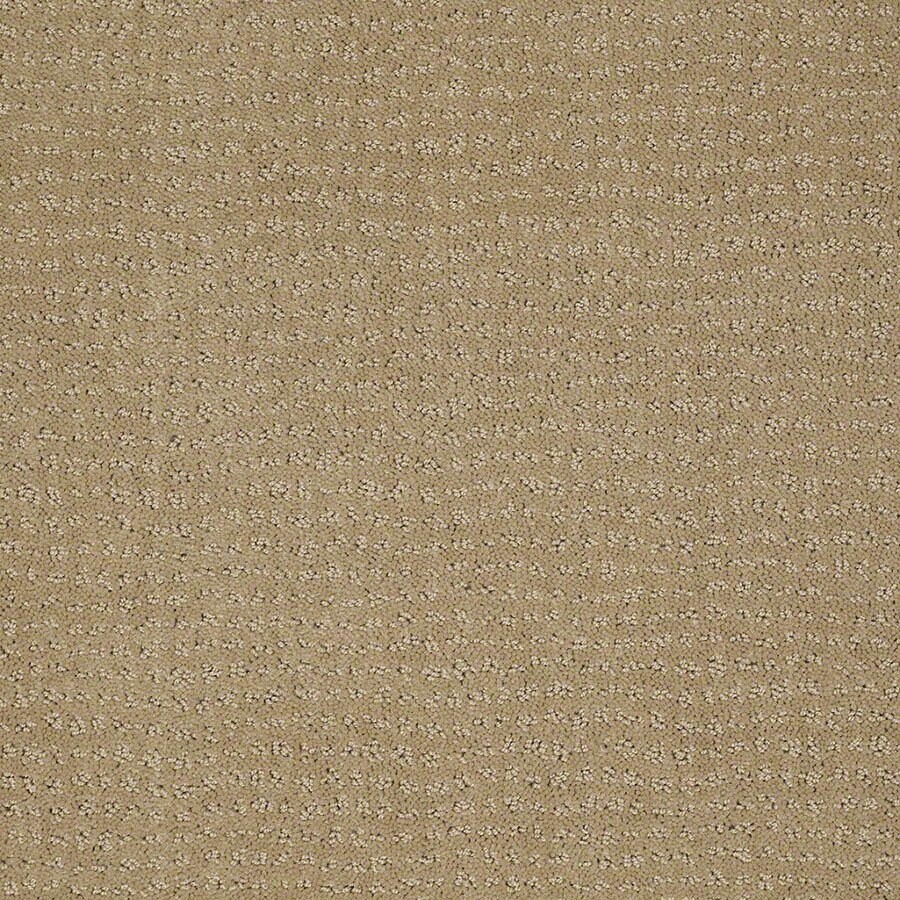 STAINMASTER Undisputed Active Family Marzipan Cut and Loop Carpet Sample