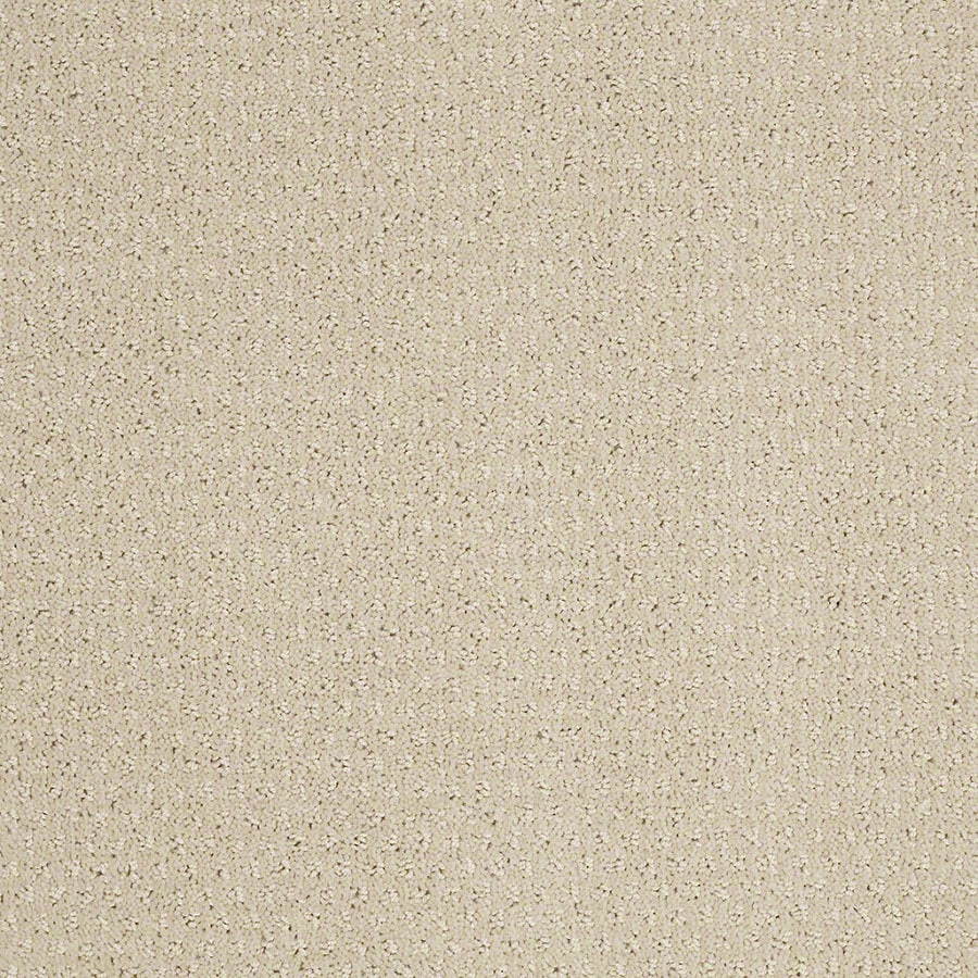 STAINMASTER St Thomas Active Family Macadamia Cut and Loop Carpet Sample