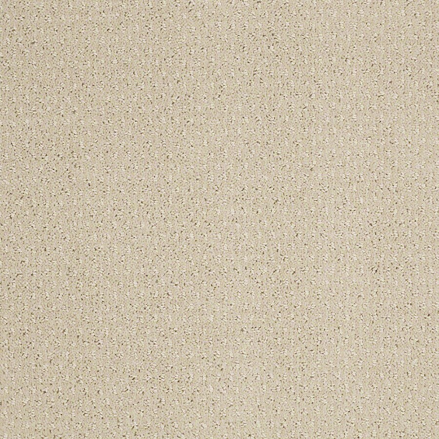 STAINMASTER Active Family St Thomas Macadamia Berber/Loop Carpet Sample