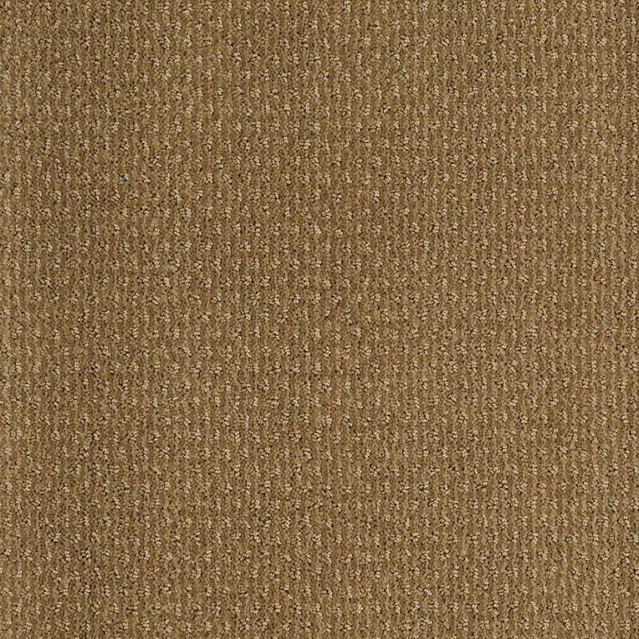 STAINMASTER Active Family St Thomas Starfish Berber/Loop Carpet Sample