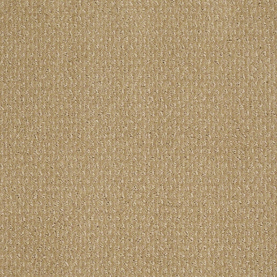 STAINMASTER St Thomas Active Family Golden Fleece Cut and Loop Carpet Sample