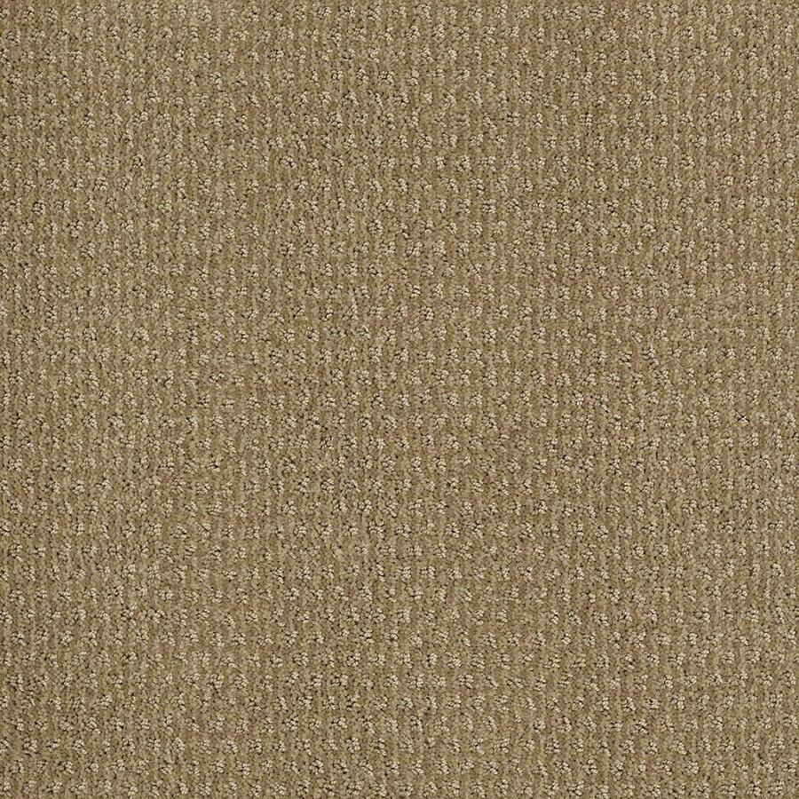 STAINMASTER Active Family St Thomas Sahara Sun Berber/Loop Carpet Sample