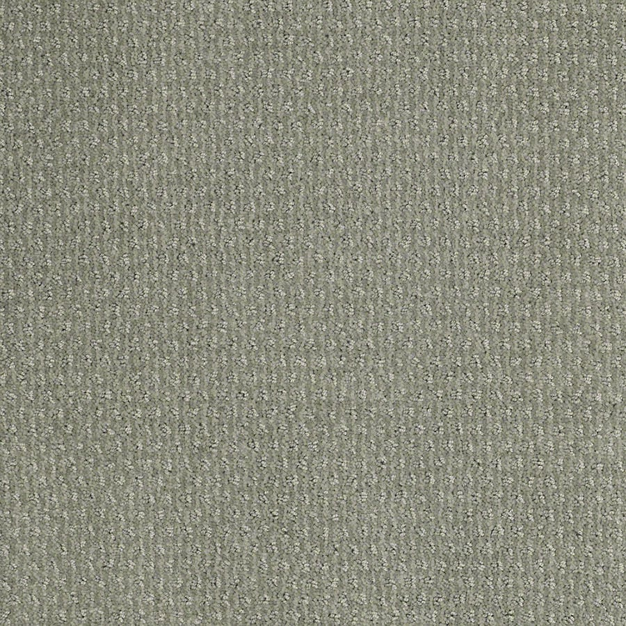 STAINMASTER St Thomas Active Family Fog Green Cut and Loop Carpet Sample