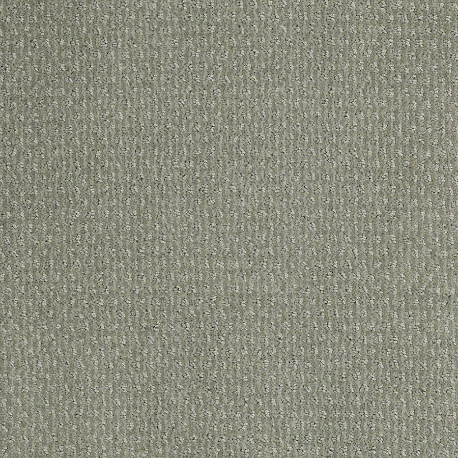 STAINMASTER Active Family St Thomas Fog Green Carpet Sample