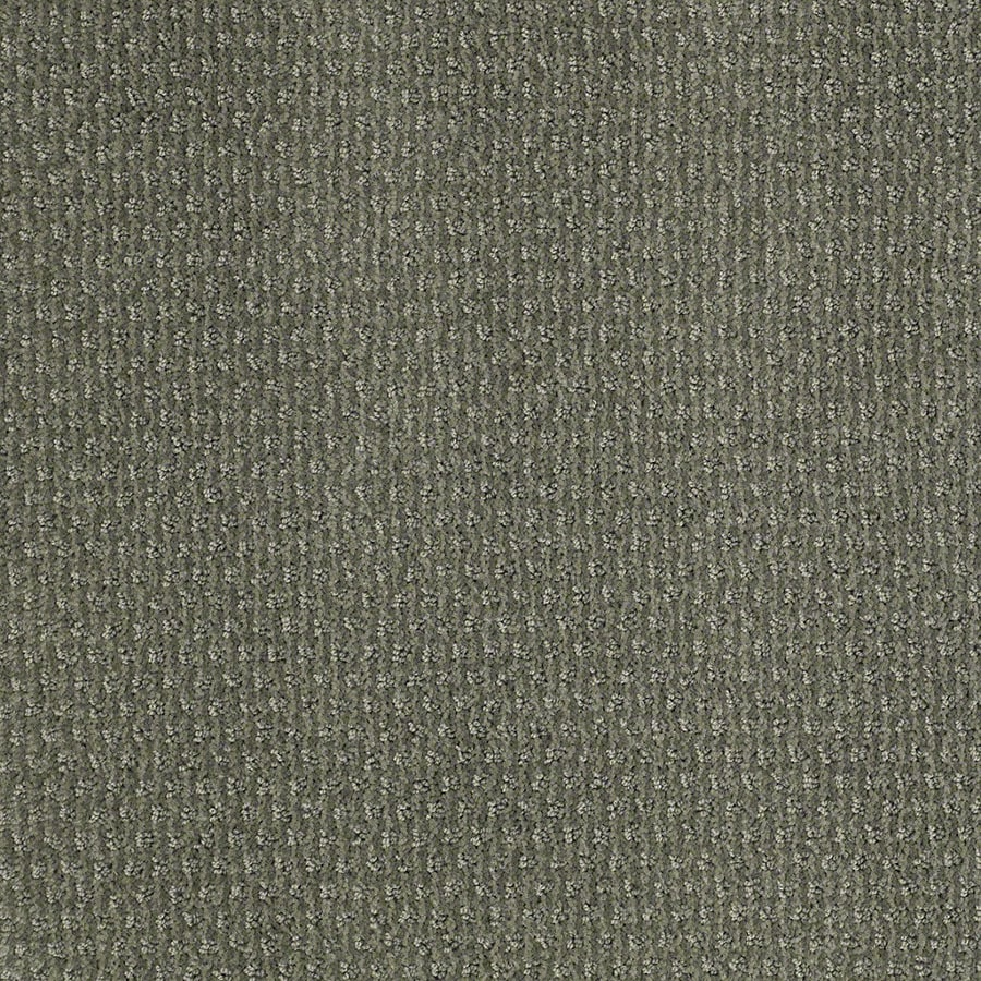 STAINMASTER St Thomas Active Family Agave Green Cut and Loop Carpet Sample